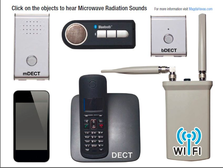 The Sound of Microwave